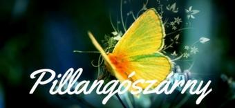 www.pillangoszarny.hu